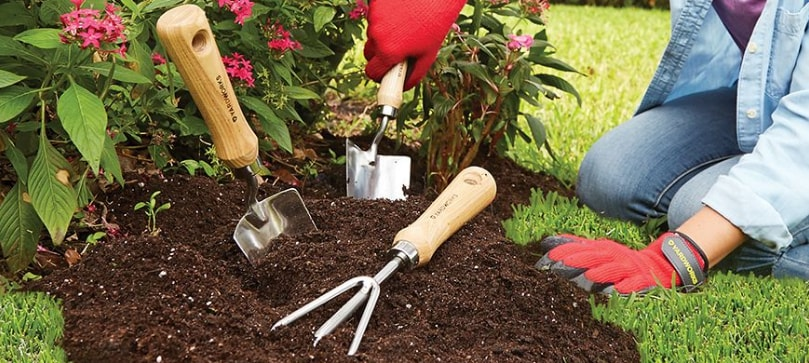 Find out what are the best gardening tools for a beiner.