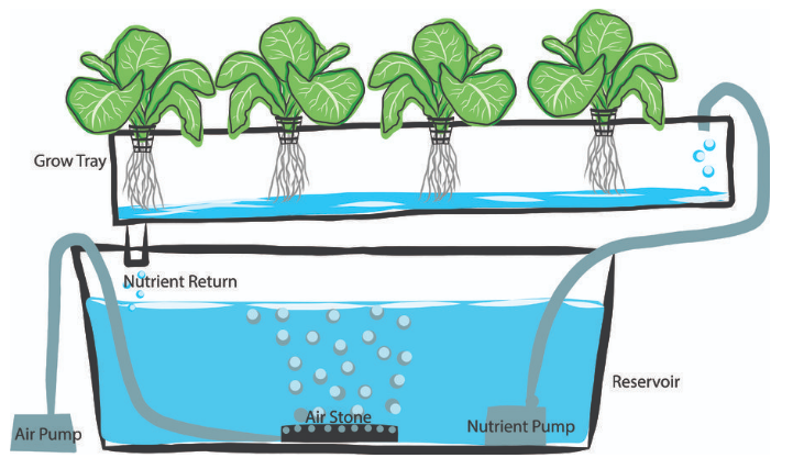 What is Hydroponic growing?
