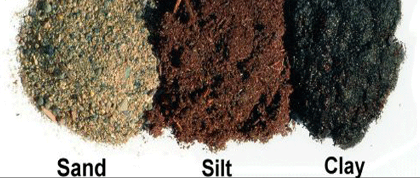 How can you identify the type of soil?